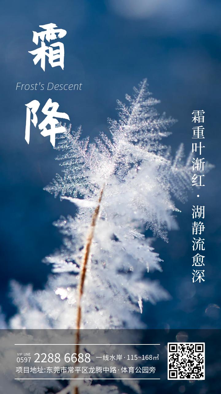 霜降二十四节气营销海报