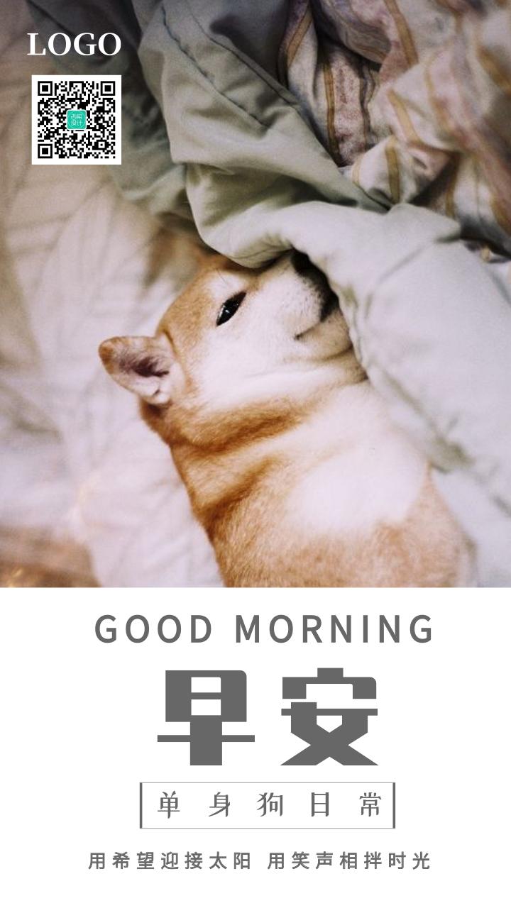 萌宠单身狗日常早安日签