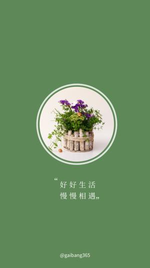 简约植物文字纯色手机壁纸
